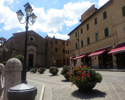 Private authorized guide of Florence